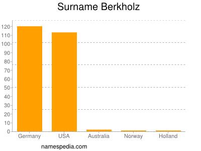 Surname Berkholz