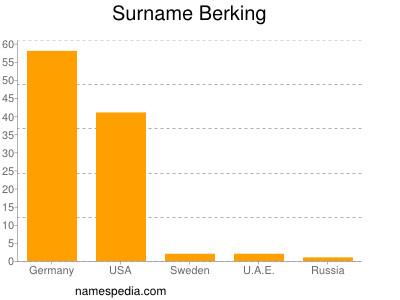 Surname Berking
