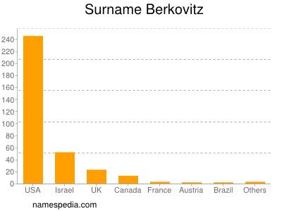 Surname Berkovitz