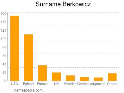 Surname Berkowicz