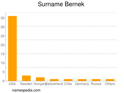 Surname Bernek