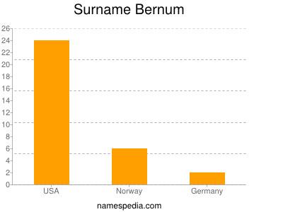 Surname Bernum