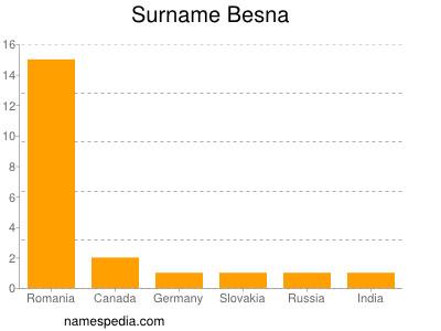 Surname Besna