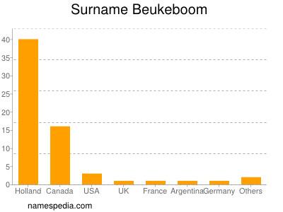 Surname Beukeboom