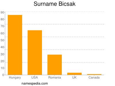 Surname Bicsak