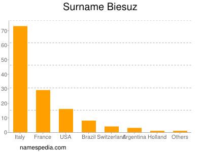Surname Biesuz