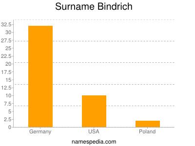 Surname Bindrich