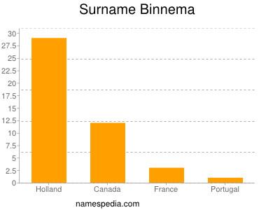 Surname Binnema