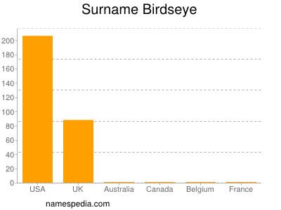 Surname Birdseye