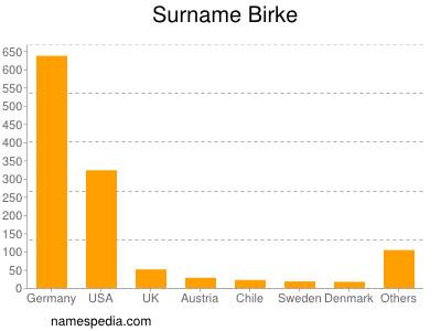 Surname Birke