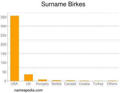 Surname Birkes