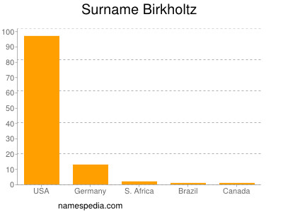 Surname Birkholtz