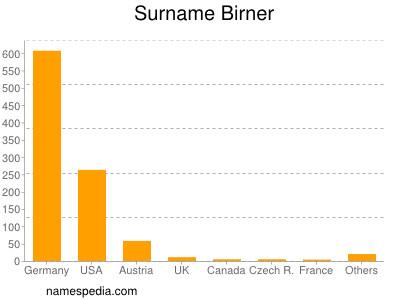 Surname Birner
