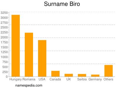 Surname Biro