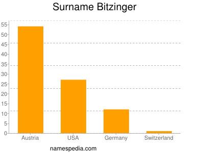 Surname Bitzinger