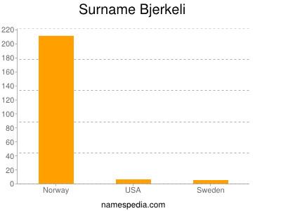 Surname Bjerkeli