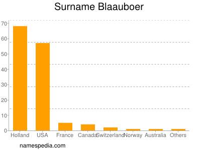 Surname Blaauboer