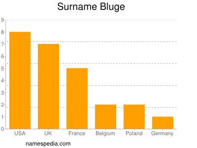Surname Bluge