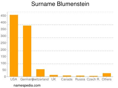 Surname Blumenstein