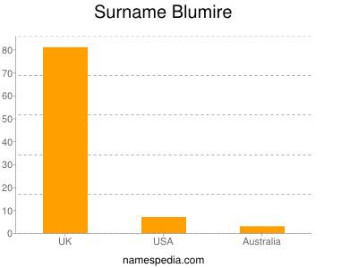Surname Blumire