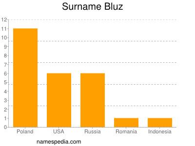 Surname Bluz