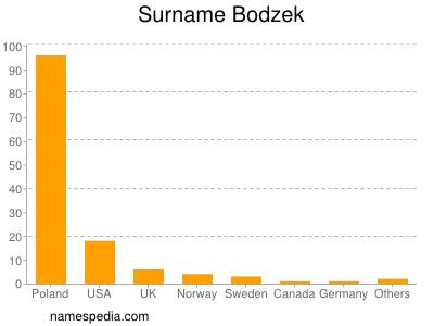 Surname Bodzek
