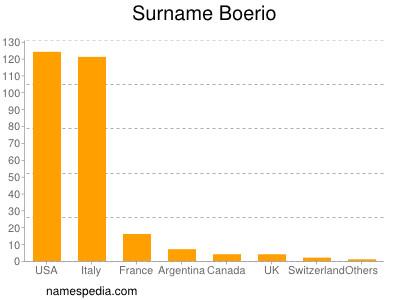 Surname Boerio