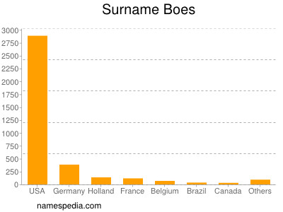 Surname Boes