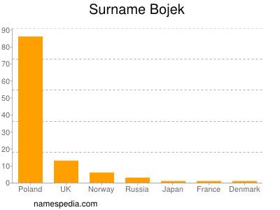 Surname Bojek