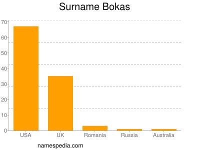 Surname Bokas