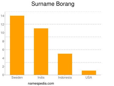 Surname Borang