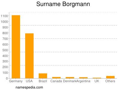 Surname Borgmann