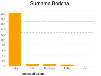 Surname Boricha