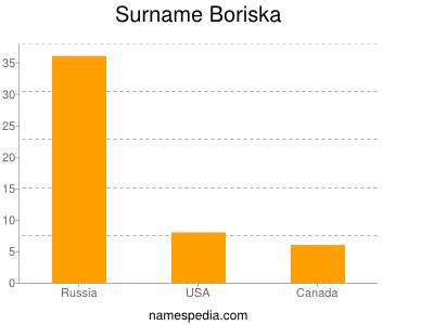 Surname Boriska