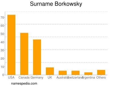 Surname Borkowsky