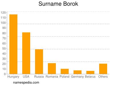 Surname Borok