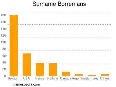 Surname Borremans
