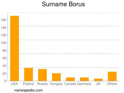 Surname Borus
