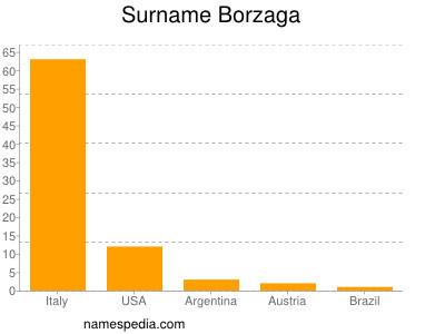 Surname Borzaga