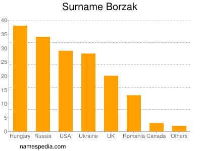 Surname Borzak
