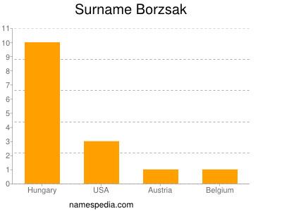 Surname Borzsak