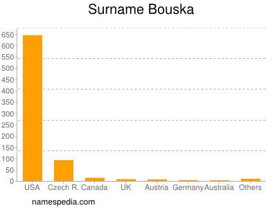 Surname Bouska