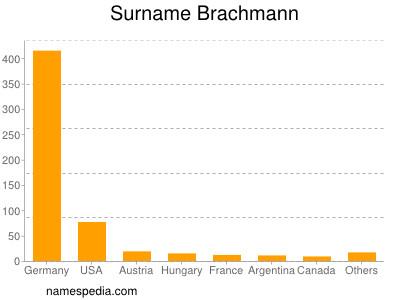 Surname Brachmann