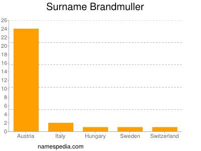 Surname Brandmuller