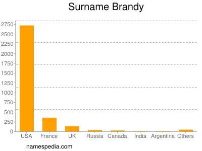 Surname Brandy