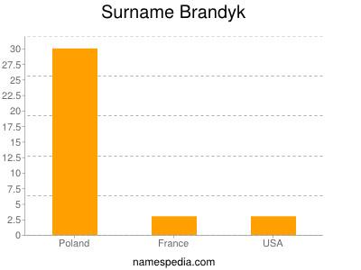 Surname Brandyk