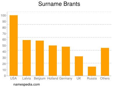 Surname Brants
