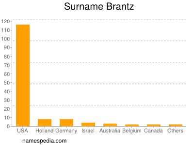 Surname Brantz