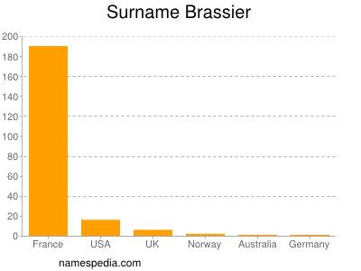 Surname Brassier