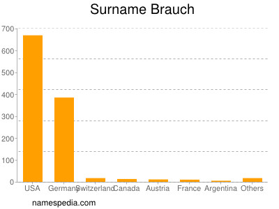 Surname Brauch